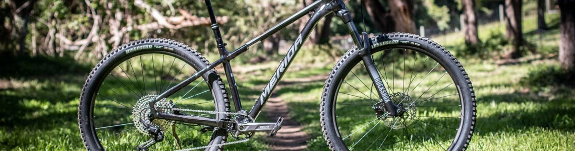 biciclete mtb Hardtail